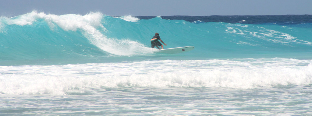 surfinbarbados Surf Tours 5